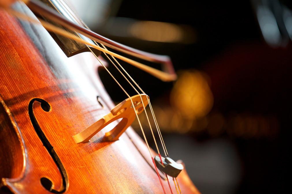 lezioni-di-violoncello