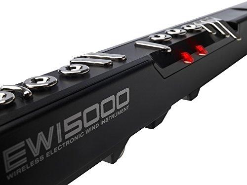 elettronic wind instrument dettaglio