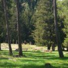 parco-ponte-di-legno-val-camonica