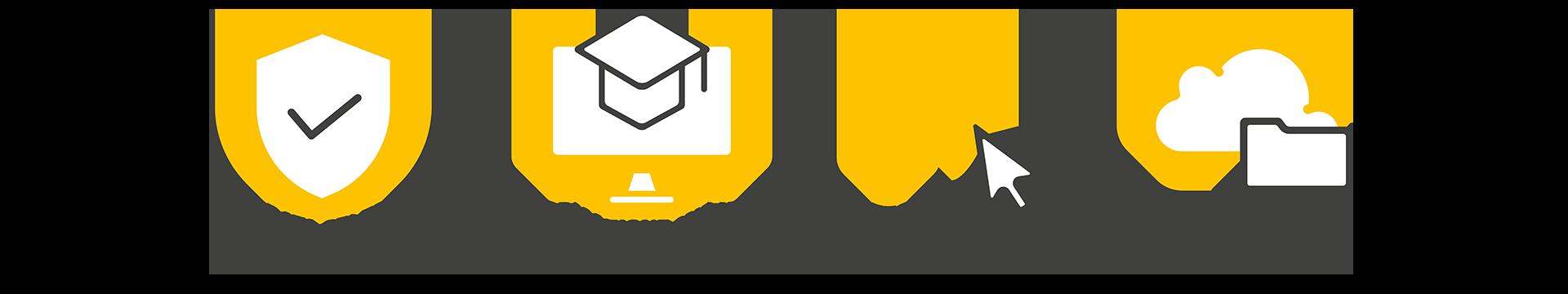 Infografica Lezioni Online
